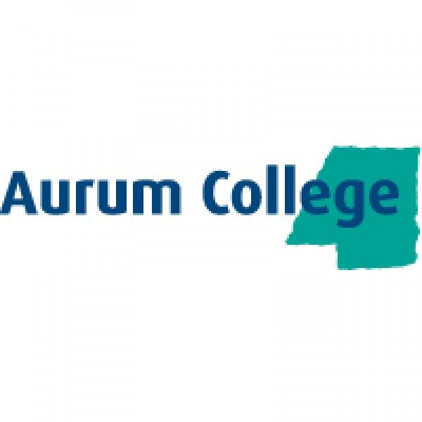 Aurum College 2020
